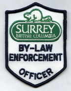 By-Law Badge